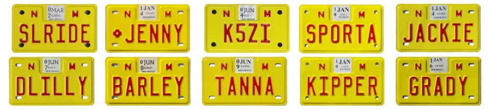 Именные номерные знаки Нью-Мексико для мотоциклов