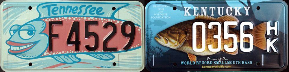Рыбы на знаках