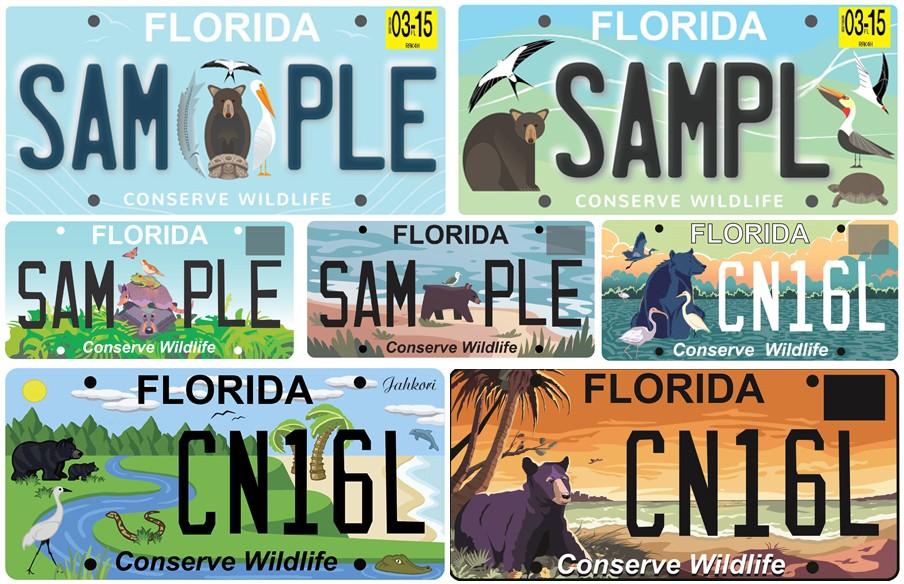 Художественные дизайны номерных знаков Флориды