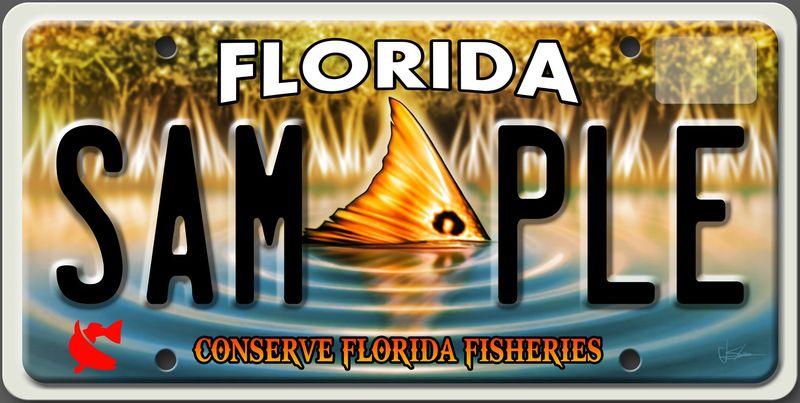 Сохраним рыбный мир Флориды