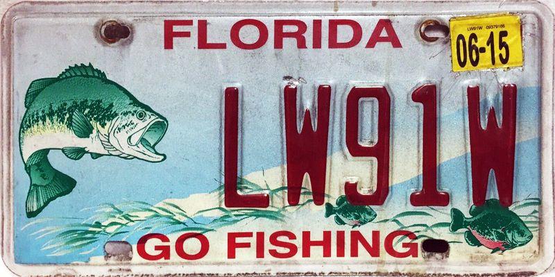 Пойдём на рыбалку
