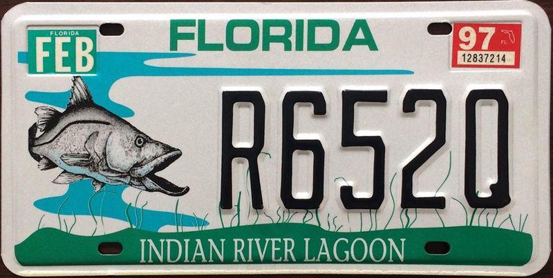 Номер Флориды посвящён индийской речной лагуне