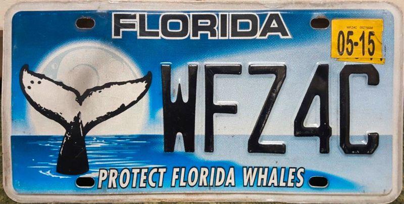 Спасти китов Флориды