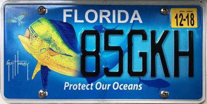 Защита океанов Флориды